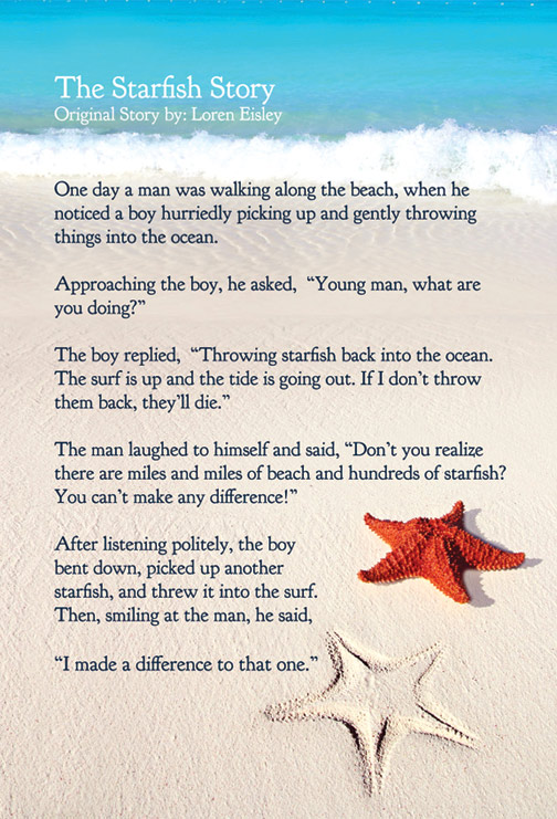 starfish-story-websize